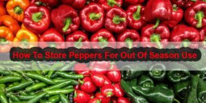 How To Store Peppers For Out Of Season Use-min