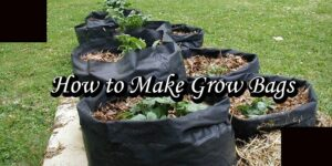 How to Make Grow Bags-min