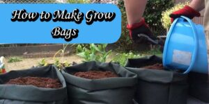 How to Make Grow Bags1-min