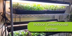 Indoor Greenhouse System-min
