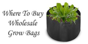Where To Buy Wholesale Grow Bags-min